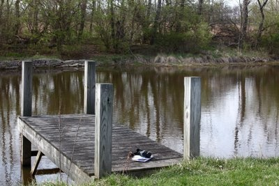 17 Best Images About Pond Docks On Pinterest Shipping