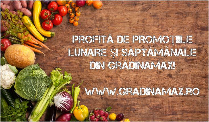 În GrădinaMax ai mereu parte de surprize, oferte speciale, promoții și cadouri! Pentru a fi la curent cu acestea, urmărește-ne aici: https://gradinamax.ro/promotii!!!