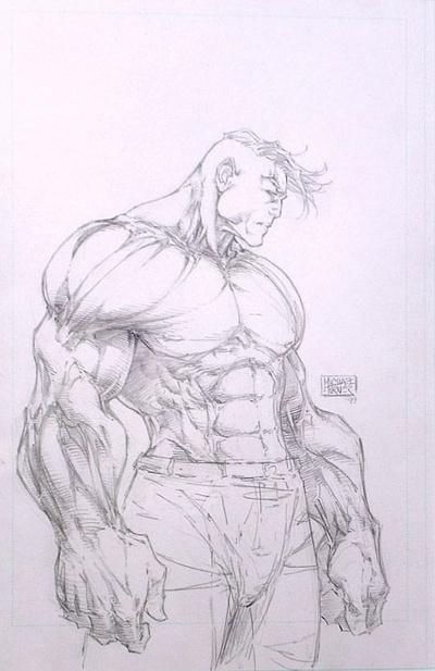 Hulk - Michael Turner