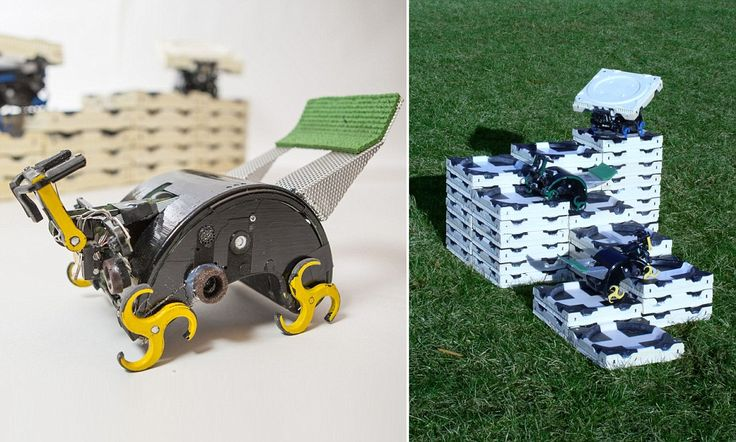 Amazing robots behave like termites to build small structures