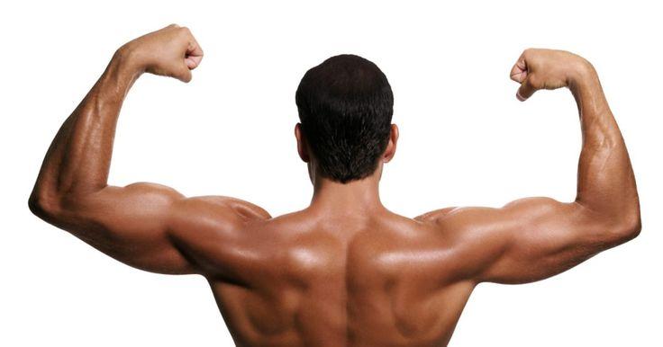 Exercícios para tonificar braços e costas. Conforme cada vez mais pessoas são conscientes do próprio corpo e tentam perdem quilos a mais, procuram especificamente por maneiras de tornear os músculos. Essas maneiras incluem exercícios que podem ser feitos para melhoras a saúde e a aparência dos músculos dos braços e da parte superior das costas.