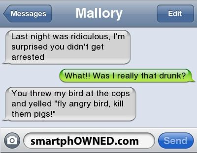 Other - MalloryLast night was ridiculous, I'm surprised you didn't get arrestedWhat!! Was I really that drunk?You threw my bird at the cops and yelled 'fly angry bird, kill them pigs!'