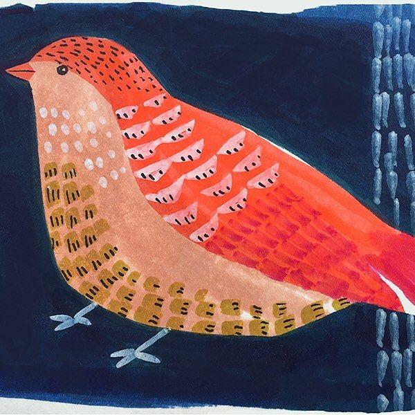 #birdstagram