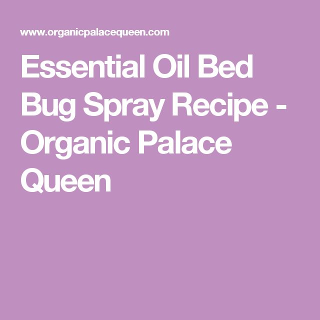 Essential Oil Bed Bug Spray Recipe - Organic Palace Queen