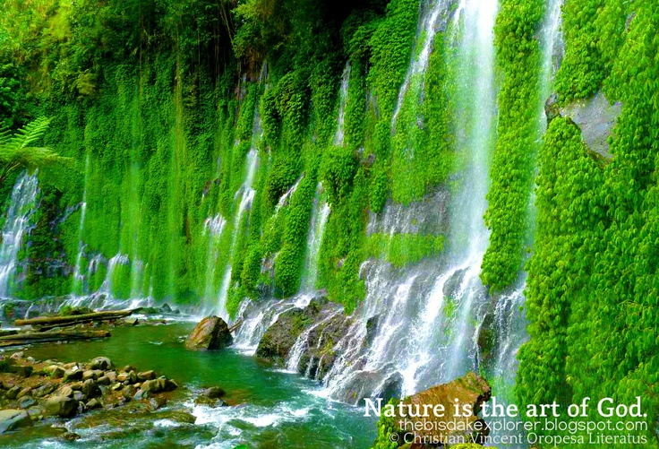 Nature is the art of God.   ~Thomas Browne  A rare spring falls that feel like it is from a faeries world.  TRAVEL GUIDE : http://thebisdakexplorer.blogspot.com