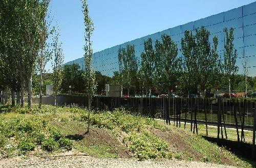 111 mejores im genes sobre ciudad universitaria madrid for Jardin botanico ucm