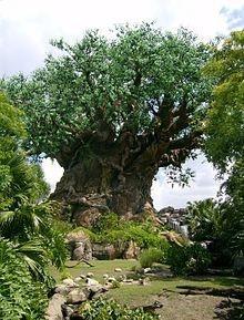 Disneyworld-Animal Kingdom - Tree of life