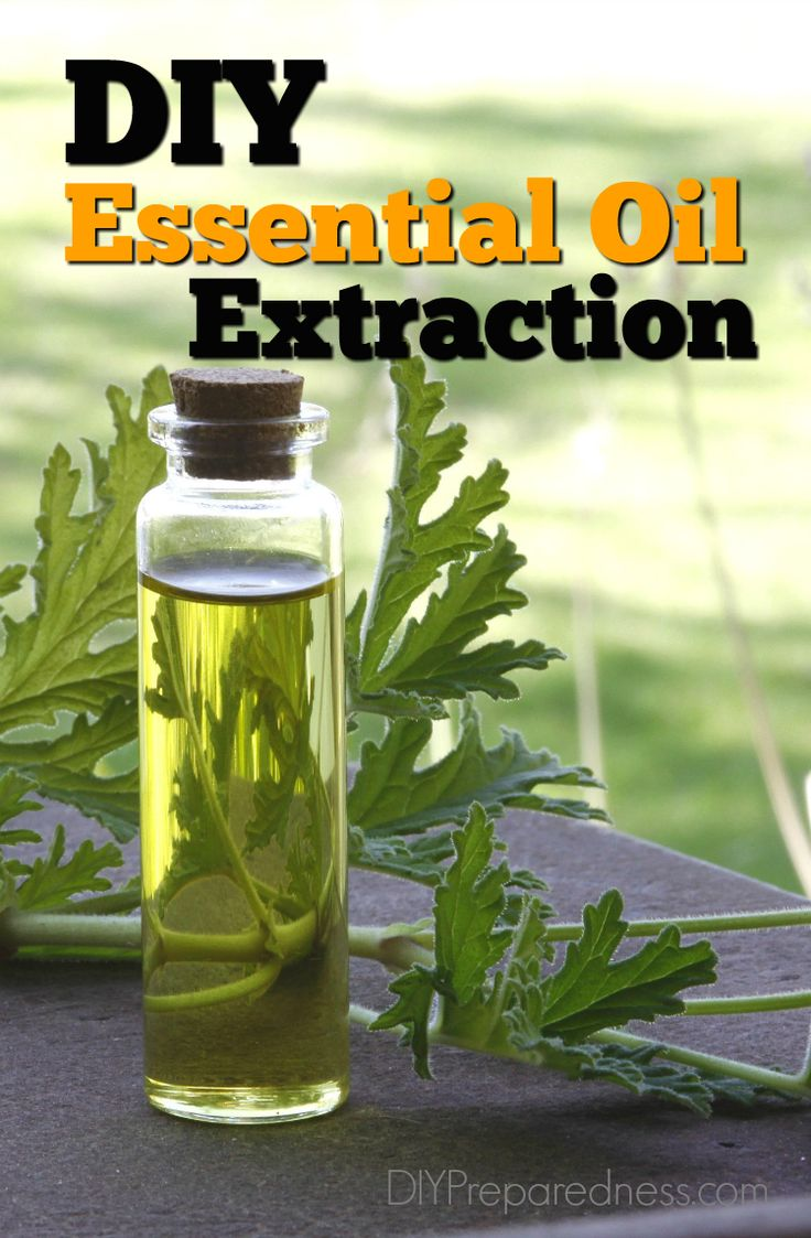 4 DIY essential oil extraction methods to make at home. Most people have access to a variety of the helping herbs that can be used during a disaster   DIY Preparedness