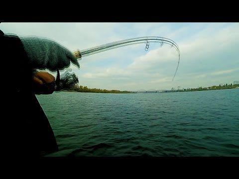 Снасть Для Ловли на Живца. Рыбалка на Днепре: Судак, Голавль, Окунь, Бычок - YouTube