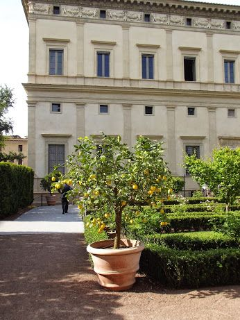 From the age of the Italian Renaissance gardens to the end of the folk medecine in the name of a pathological profit pursuit and synthetic ingredients use  http://erbeitalianskincare.blogspot.it/2014/05/the-italian-corridor-leading-us-towards.html