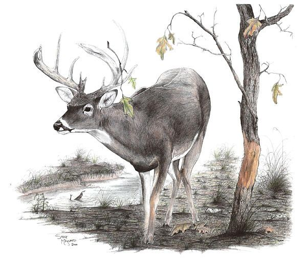 hunting sites