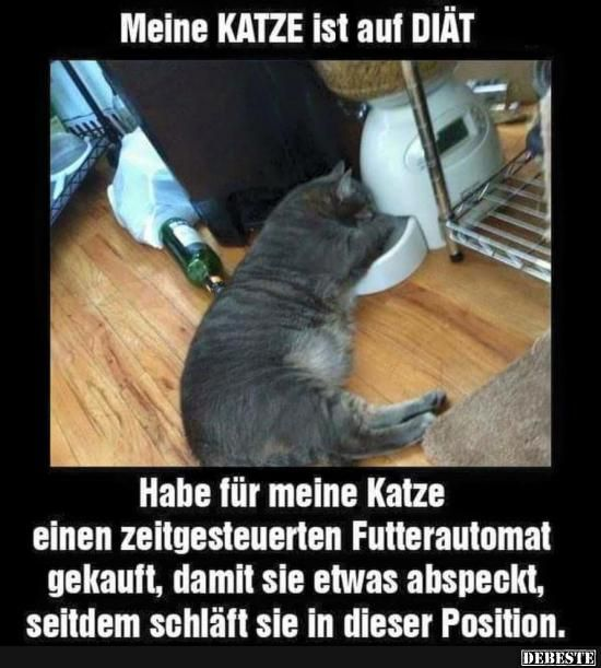 Best pictures, videos and sayings and there are daily new funny Facebook pictures on DEBESTE.DE. Here are daily jokes and sayings posted …