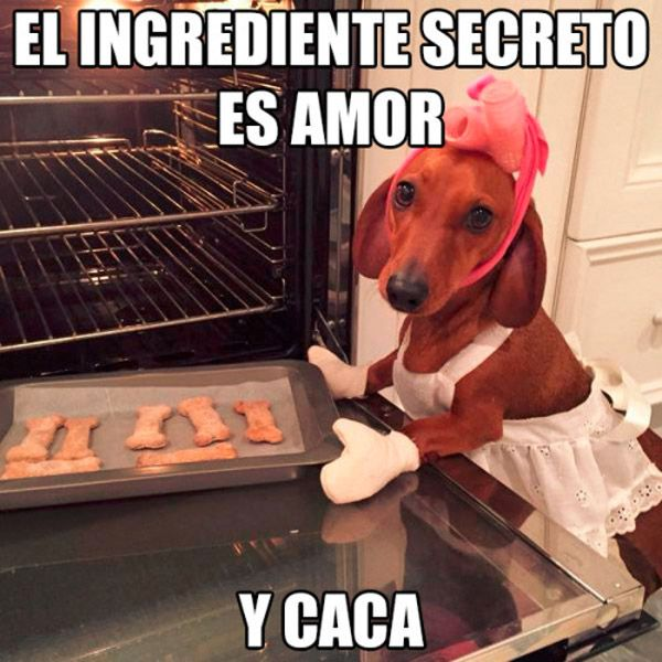 El ingrediente secreto es amor