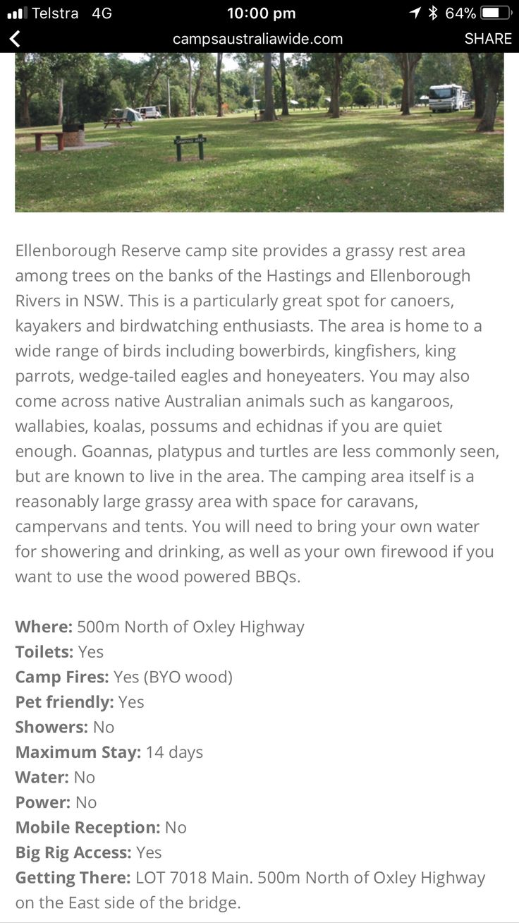 Ellenborough Reserve camp site provides a grassy rest area among trees on the banks of the Hastings and Ellenborough Rivers in NSW Free camp Dog friendly