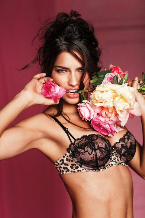victoria-secret-valentines-day-collection lingerie