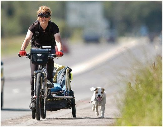 Commercial #Advertising #Photographer in North East #England | #Burley #bike #trailer with her pet dog