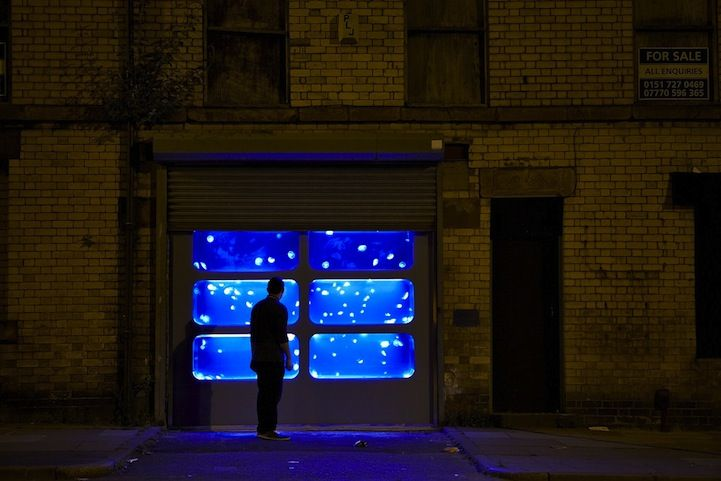 Glowing Jellyfish Tank in Abandoned Building Surprises Liverpool Residents - My Modern Met