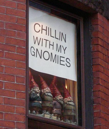 The gnome shop                                                                                                                                                      More