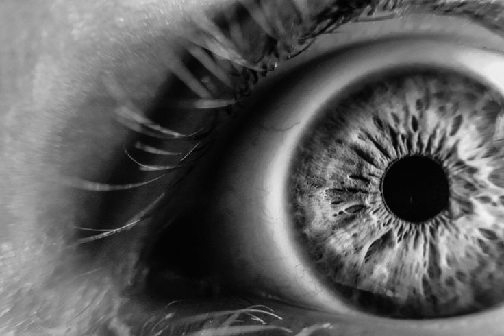Eye monochrome macro photography Download free addictive high quality photos,beautiful images and amazing digital art graphics about Black and White.