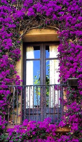 Barcelona, Spain.                                                                                                                                                                     More