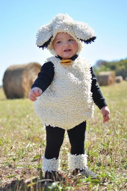Sheep costume�