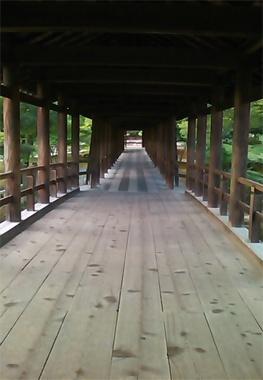 東福寺の通天橋。橋下に広がる見事な紅葉で人気ですが、新緑の頃もたいそう美しい。体のなかを風が通り抜け、浄化されるよう。(水戸)【Numero TOKYO編集長 田中杏子 】  http://lexus.jp/cp/10editors/contents/numero/index.html  ※掲載写真の権利及び管理責任は各編集部にあります。LEXUS pinterestに投稿されたコメントは、LEXUSの基準により取り下げる場合があります。