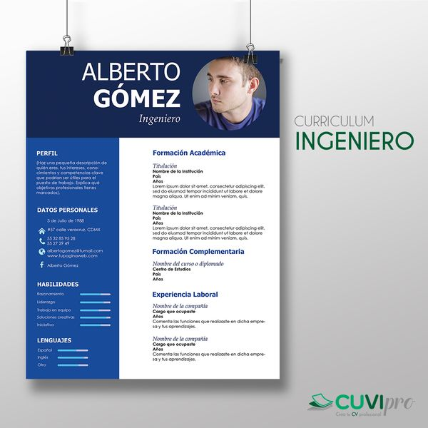 Resultado de imagen para curriculum vitae de un ingeniero en sistemas