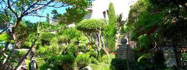 """Résultat de recherche d'images pour """"petit jardin de buis lussan"""""""