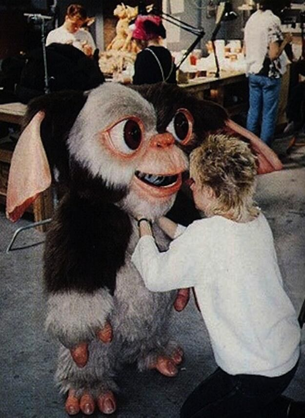 /// Behind the scenes:most people don't realize how huge Gizmo's head was on some of the close-ups - Zach Galligan #Gremlins
