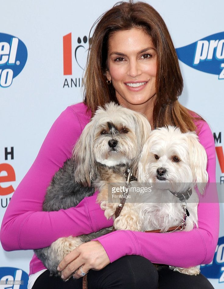 Cindy Crawford attends 'Propel Zero To 1000' pledge and celebrity dog-walking event at Church Estate Vineyards on April 2, 2011 in Malibu, California.