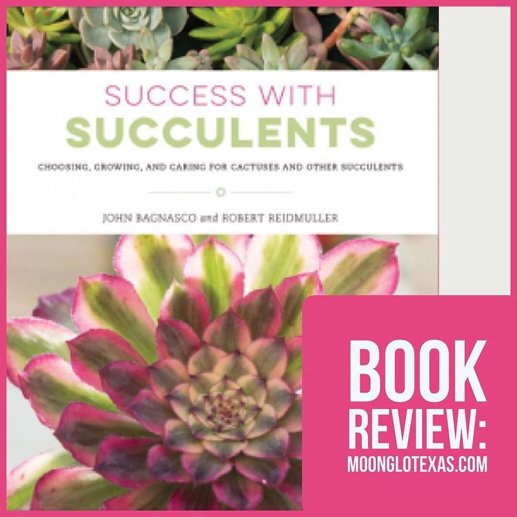 Success in Succulents focuses on the more technical aspects of succulent growth and care. Rich in history each family of succulents is explained in terms of origin ease of growth and purpose. Indoor and outdoor care to obtain the best from ones succulents is expressed in easy-to-follow steps covering soil placement food and design. I found it highly informative but definitely a reference book! I read it twice to review to be sure I hadnt misinterpreted it but the wealth of knowledge shared…