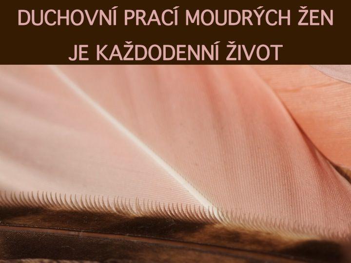 MOUDRÉ ŽENY V NÁS jsou víkendová setkání pro všechny ženy, které chtějí oživit své ženství, prohloubit svou ženskou moudrost v každodenním životě a myslí to vážně. Můžete se přihlásit na jednotlivé víkendy nebo na všechny. Víkendový cyklus bude postupně doplňován o ochutnávkové večery a pravidelná setkávání.  www.indigenousnature.cz