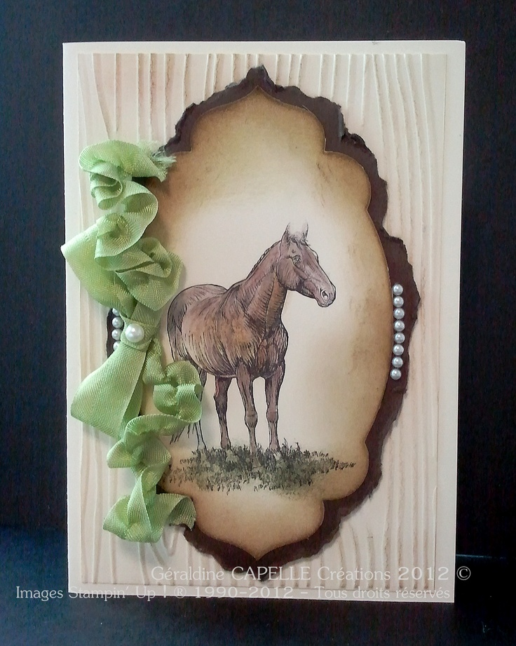 To complete; pearl paper embellishments, white paper, wood paper, brown paper, standing horse stamp, mint ribbon  Stampin' Up!