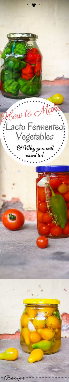 How to Make Lacto Fermented Vegetables -And Why You Will Want to! – Rebels Kitchen