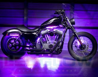 LEDGlow Purple Motorcycle Lighting,    I professionally install anything LEDGlow sells. (503) 890-2819