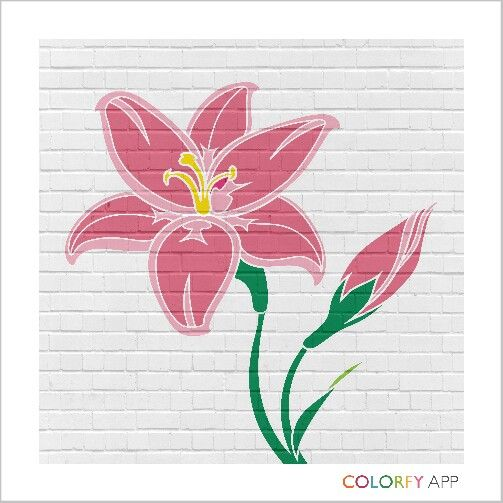 1st #colorfy