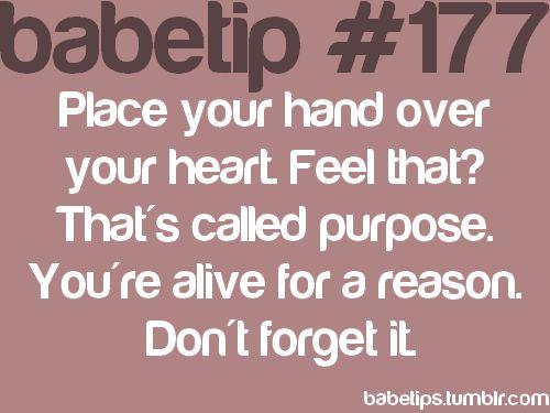 believe it!Babetip Quotes, Babetip Advice