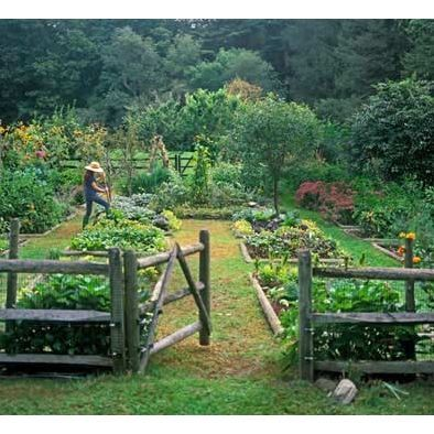 Potager Design, Pictures, Remodel, Decor and Ideas - page 5