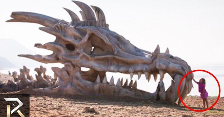 Δέκα μυθικά πλάσματα που όμως… υπήρξαν στην πραγματικότητα! (βίντεο)