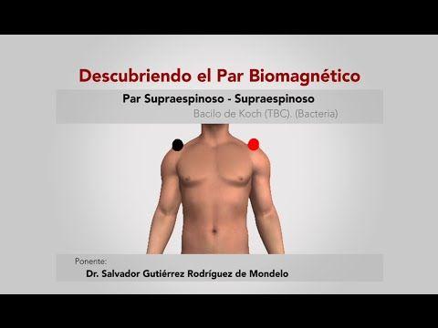 (185) Descubriendo el Par Biomagnético. Par Supraespinoso - YouTube