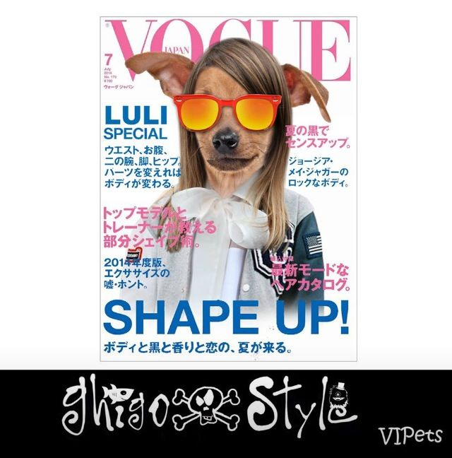 Stylish on the Vogue cover