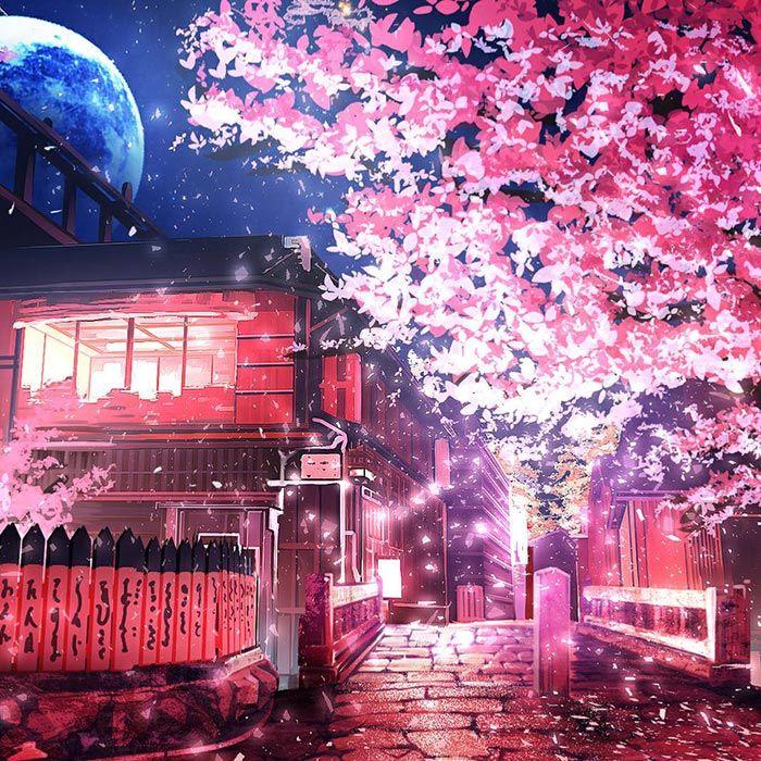 Cherry Tree Wallpaper Engine Anime Scenery Wallpaper Scenery Wallpaper Anime Scenery Cherry blossom night anime wallpaper