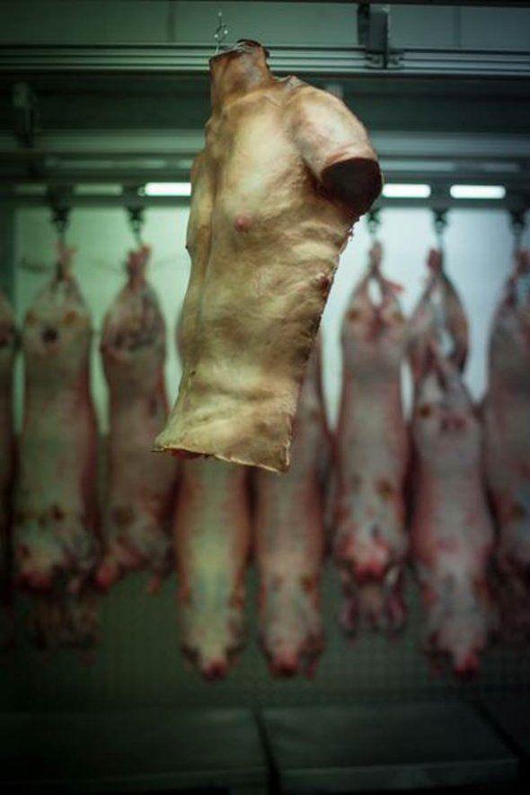 A Human Flesh Meat Market - Wall to Watch