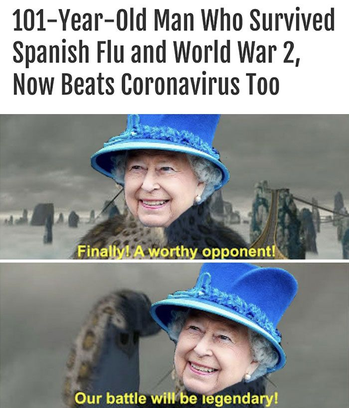 People Notice That Queen Is Immortal Create 40 Hilarious Memes In 2020 Stupid Memes Humor Stupid Funny Memes