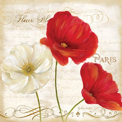 RB6792CC Paris Poppies I 18x18
