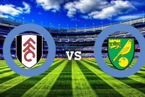 Prediksi Score Fulham vs Norwich City 5 Agustus 2017 | Prediksi Skor Bola Fulham vs Norwich City | Prediksi Agen Judi Bola Fulham vs Norwich City | Prediksi Pertandingan Fulham vs Norwich City | Pada Pertandingan CHAMPIONSHIP pekan ini Partai Fulham akan bertemu dengan Partai Norwich City . Pertandingan antara Fulham vs Norwich City kali ini akan di Craven Cottage, (London), pada Sabtu tanggal 5 Agustus 2017 pukul 21:00 WIB.