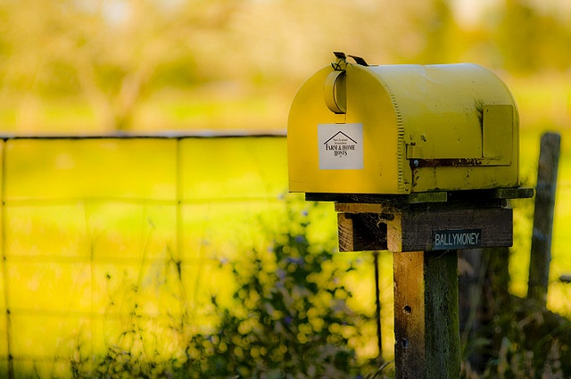 Yellow Mail Box in New Zealand