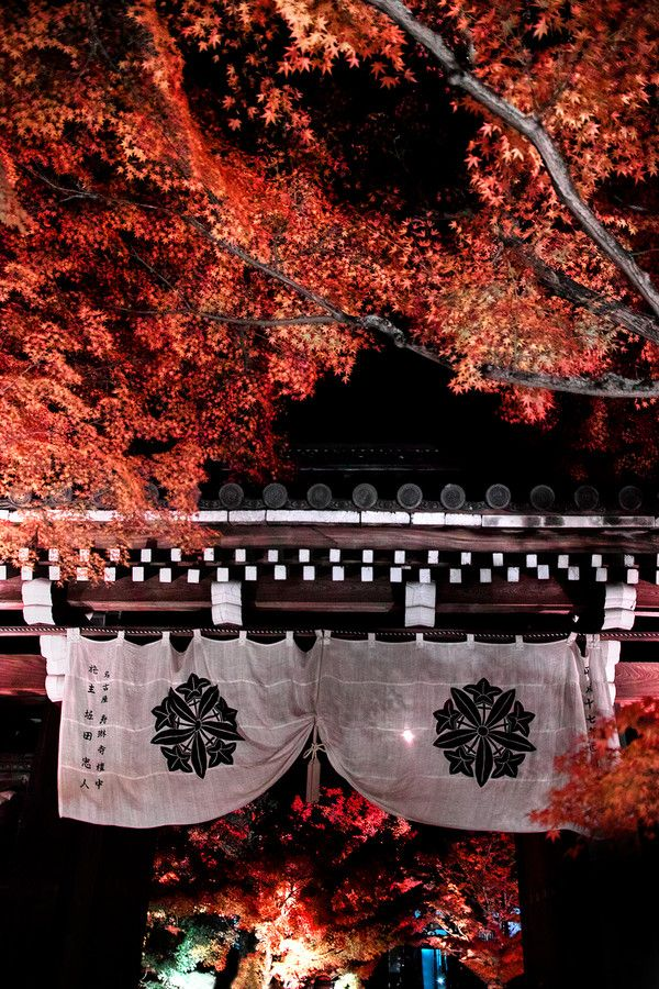 The Wonder Gate, Zenrin-ji temple, Kyoto, Japan