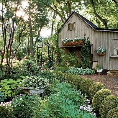 shade garden, lovely!