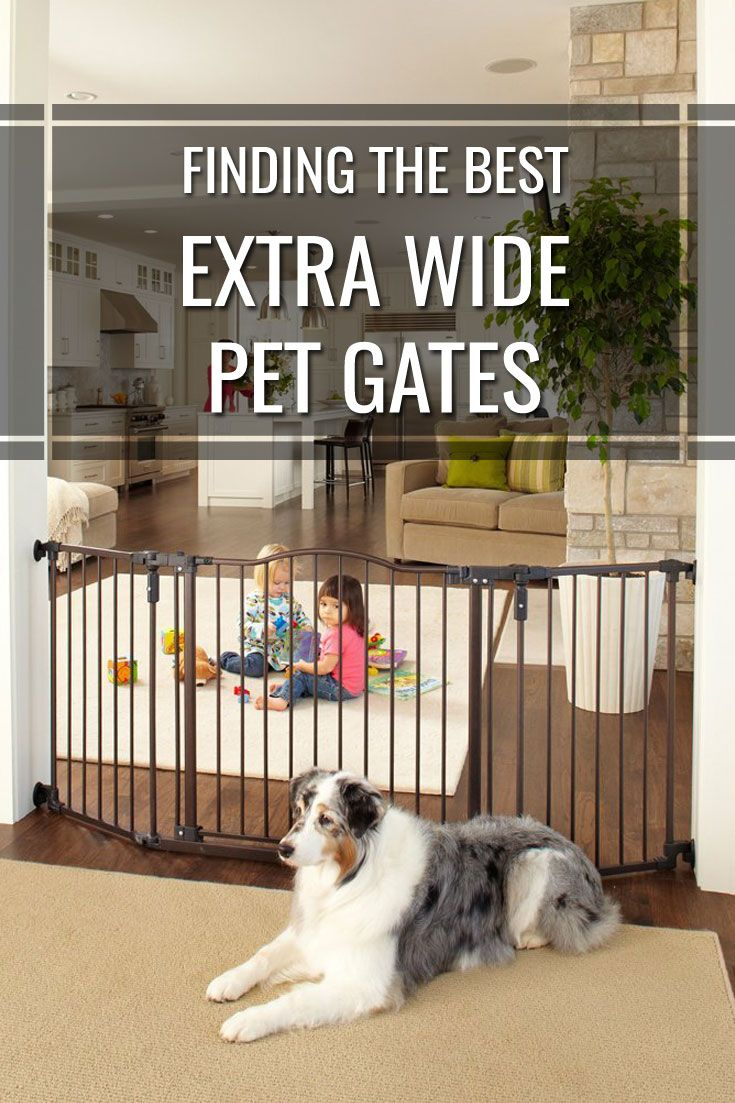 The Best Extra Wide Pet Gates For Your Home In 2016: Sometimes the space you need to portion off for your pet has an extra large doorway or gap that makes it impossible to barricade with a standard pet gate. Fortunately there are extra wide pet gates that address this need.